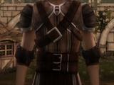 Dalish Armor