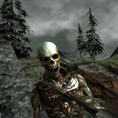 Leichnam in Dragon Age II
