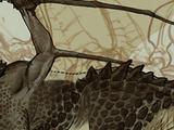 Ставка командования: Узнать больше о драконах