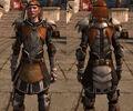 DA2 Guardsman Plate and Chain - (Aveline companion armor).jpg