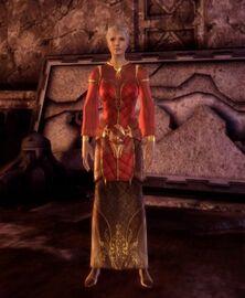 Одеяние старшего чародея(эльф)