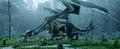Dragon Vinsomer.png