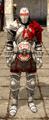 BloodDragonArmorDAII.png