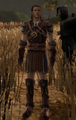 Dalish Leather armor set.png