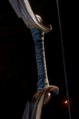 Dalish Firm Longbow Grip.png