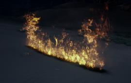 Демонстрация умения Долгоживущий огонь (Inquisition)