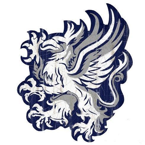 Image Grey Warden Gryphong Dragon Age Wiki Fandom Powered