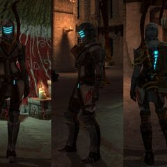 Ser Isaac's Armor Set on female Hawke