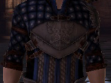 Warden Scout's Tunic