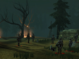 Forest Clearing (Awakening)