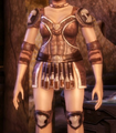 Duster Leather Armor.png