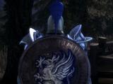 Large Grey Warden Shield