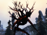 Charred sylvan