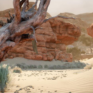 Obszar pustynny