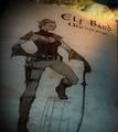 Elf Bard HODA.png
