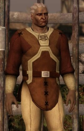 Sten-dragon-age-origins