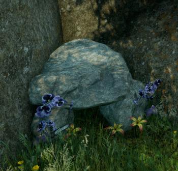 Die kleinste Höhle - Der Schrein