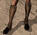 Hunter's Boots.png