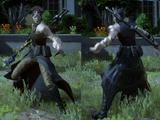 Necromancer's Raiment (Bloodbinder)