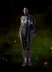 Дивная кольчуга мастера боя (Кассандра)
