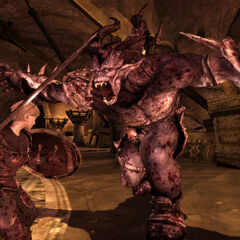 Ein Oger in <i>Dragon Age: Origins</i>