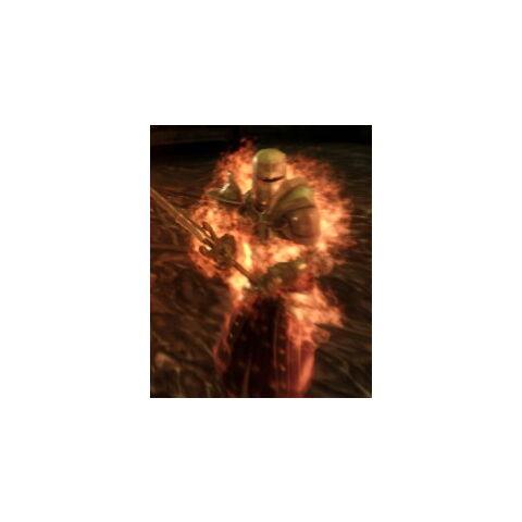 Burning templar
