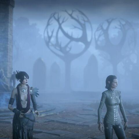 Morrigan und der Inquisitor am Kreuzweg