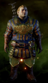Warden-Scout-Armor-Varric.png