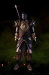 Одеяния драконоборца (Дориан)