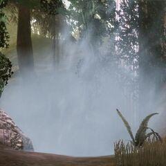 Die magische Barriere im Wald