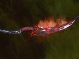 Эскиз: Отменный клинок с двумя изгибами