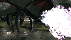Зрелый дракон1