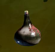 Weg des Assassinen - Flasche des Rauchs