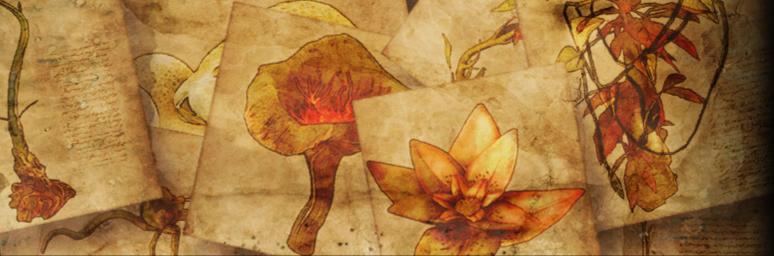 Lotus und Wurzel - Font