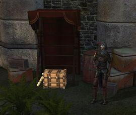 Охотничьи припасы (Mark of the Assassin)
