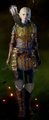 Warden-Scout-Armor-Sera.png