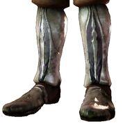 Ботинки стража