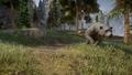Large Bear Hinterlands.png