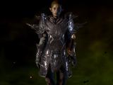 Revered Defender Armor Schematic