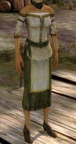 Одежда (эльф)