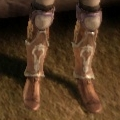 DAO Lion's Paw light boots