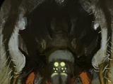 Kodeks: Olbrzymi pająk (Inkwizycja)
