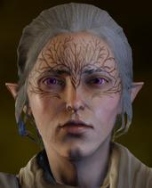 Delia elder