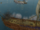 Battle of the Nocen Sea