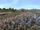 Fourth Battle of Marnus Pell