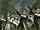 Third Battle of Marnus Pell
