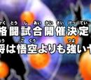 Episode 29 (Dragon Ball Super)