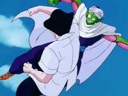 Shen vs Piccolo