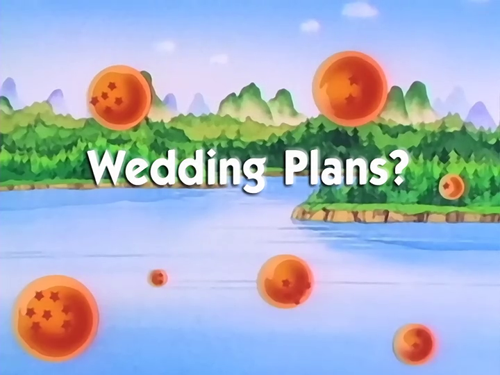Wedding plans dragon ball wiki fandom powered by wikia wedding plans junglespirit Image collections