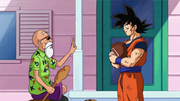 Muten spiega il Mafuba a Goku